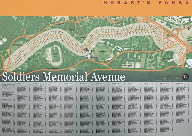 The map of Soldiers Memorial Avenue giving some sense of the scale of this fitting tribute.