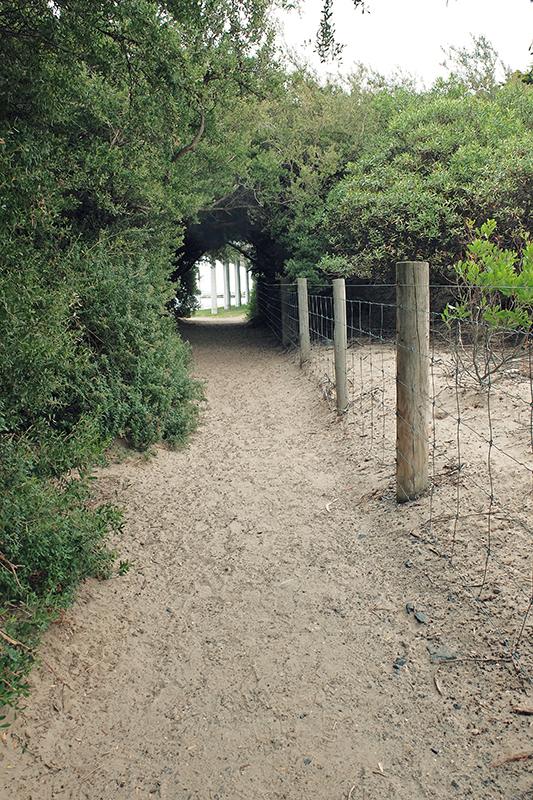 A quaint little natural tunnel joins up the lovely sandy beach with the Sandy Bay Foreshore Track.