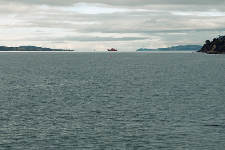 The Aurora Australis research vessel sits at anchor out in the estuary.