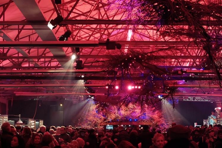 The red lighting and primitive natural elements seem to be the main theme of Dark Mofo.