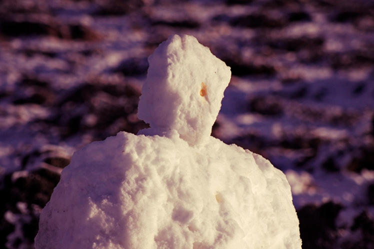 And the award for worst snowman 2015 goes to.......