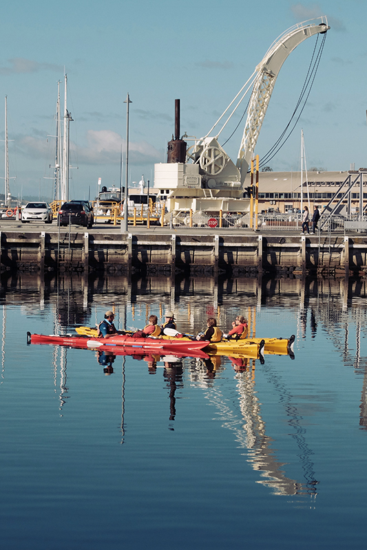 Some lucky punters taking their kayaks for a paddle around Constitution Dock (9) with Roaring 40's Kayaking.
